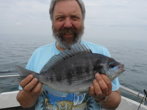 Black Bream 3lb, Skipper, 21st April 2014