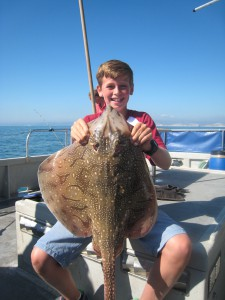 Undulate Ray, 10lb, 30th August 2016